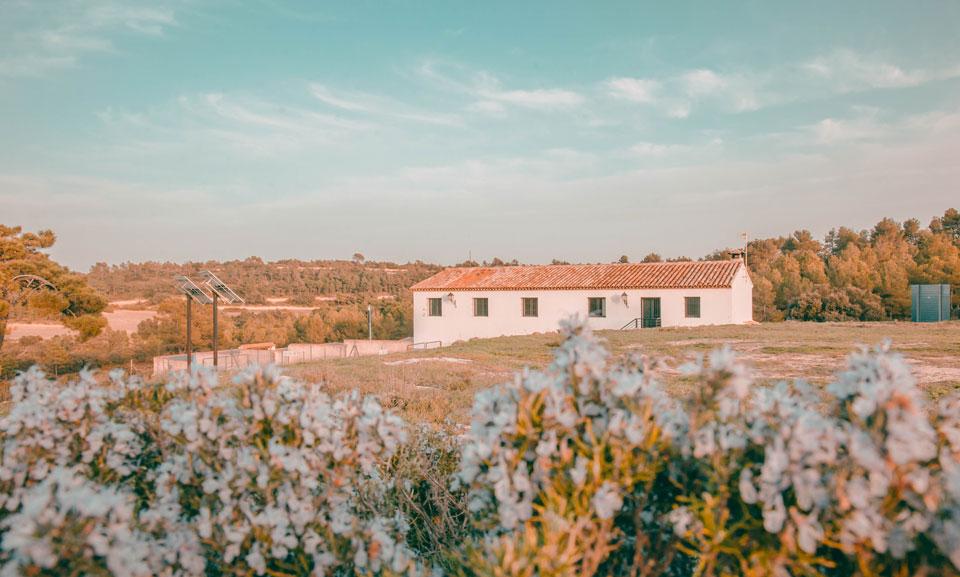 3 Razones para disfrutar de nuestra casa rural